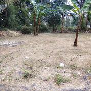 Tanah Kavling Boja Pinggur Jalan Utama, Nyaman Dan Murah Meriah. Istimewa (21236467) di Kota Semarang
