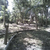 Sebidang Tanah Di Galesong Utara (21276827) di Kab. Takalar