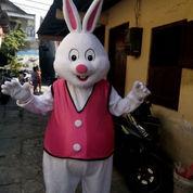 Sewa Badut Karakter Tayo, Bunny, Kelinci Dan Badut Sulap Mc Bali (21302171) di Kota Denpasar