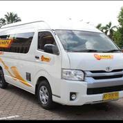 Travel Sangatta - Samarinda Bandara Apt Pranoto (21326507) di Kota Samarinda