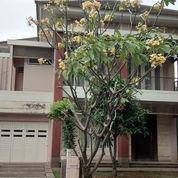 Rumah Bagus Palma Alam Sutera (21328531) di Kota Tangerang Selatan