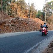 Tanah Strategis Buka Usaha/ Villa Karanganyar (21340483) di Kab. Karanganyar