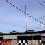 J> Pabrik 3 Jenis Briket Arang Produksi Lancar Full Export Surabaya (21348099) di Kota Surabaya