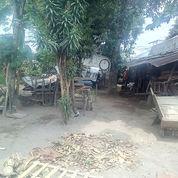 Tanah Nyaman Di Sagan,,Harga Nego (21377379) di Kota Yogyakarta