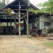 Gudang 1060 M2 - Jl. Pangkalan 2 Bekasi (21378131) di Kota Bekasi