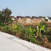 Tanah Pekarangan 4.474m2 Daerah Purbayan, Gentan, Sukoharjo, Surakarta (21385191) di Kab. Sukoharjo