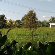 Tanah Datar 7600 M2 Cocok Untuk Perumahan Di Darangdan Purwakarta