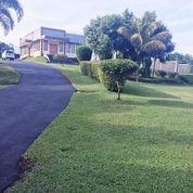 Villa Di Gunung Gelis Ciawi Bogor