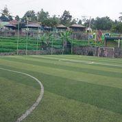 Rumput Sintetis Bekas (21430279) di Kota Bekasi