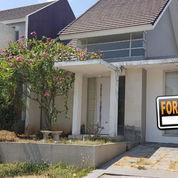 #A1788 Modern Minimalist House At Greenwood Citraland 1FLOOR SHM Ready To Stay (21440079) di Kota Surabaya