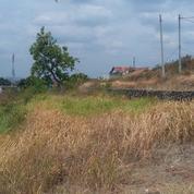 Tanah Siap Bangun Untuk Perumahan (Bisa Tempo) (21442703) di Kota Semarang