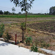 Tanah Kapling Harjosari Kidul 667rb/Meter