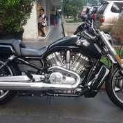 Motor Harley VROD MUSCLE 2013 FP