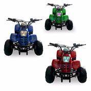 (INDENT) ATV Speedy 110cc