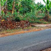 Tanah Siap Buka Usaha Timur BRI Mojogedang (21577907) di Kab. Karanganyar