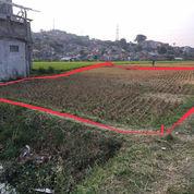 Tanah Strategis Lokasi Sodong Padalarang (21616799) di Kota Bandung