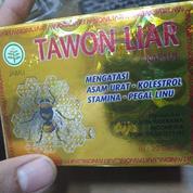 TAWON LIAR|JAMU TAWON LIAR|KAPSUL TAWON LIAR (21631439) di Kab. Sarmi