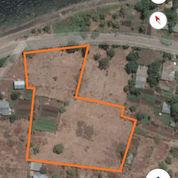 Tanah Maumere Pantura (21654875) di Kab. Sikka