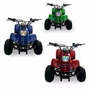 Ready Gan ATV Speedy 110cc