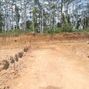 Tanah Kavling Siap Bangun Kota Btau Tanpa Bunga (SHM) (21660319) di Kota Batu