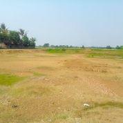 Tanah Ditengah Kota Karawang Harga Nego Di Kota Karawang (21669711) di Kab. Bekasi