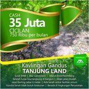 Tanah Kapling Murah Sudah SHM (21678963) di Kota Palembang