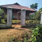 Murah Rumah Villa Dan Tanah Kebun Manggis 1,6 Ha Di Bojong Purwakarta