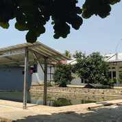Rumah Dan Kontrakan + Kolam Pancing, Warungkondang (21742455) di Kab. Cianjur