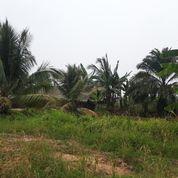 Tanah Uk 20 X 20 Siap Bangun Surat Camat Lokasi Talang Betutu (21763343) di Kota Palembang