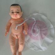 Alat Peraga Manikin Kebidan, Bayi Placenta (2176500) di Kota Banjarmasin