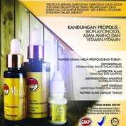 Propolis Melia Asli Bandung (21780619) di Kota Bandung