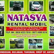NATASYA Rent Car Tegal