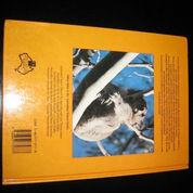 Buku English Hard Cover ttg KOALA