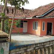 Rumah Dekat Ke Jalan Raya Dan Sarana Umum Harga Murah Masih Nego (21870091) di Kab. Purwakarta
