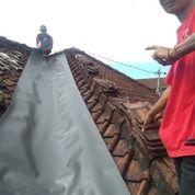 Tukang Cat Dan Genteng Bocor (21891811) di Kota Denpasar