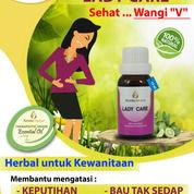 Obat Herbal Keputihan, Obat Tradisional Rawat Miss V, Lady Care (21914263) di Kota Tangerang