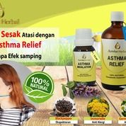 Obat Asma Herbal Alami Untuk Dewasa (21945503) di Kota Tangerang