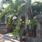 Rumah Mewah Murah Layak Huni (21968559) di Kota Jakarta Timur