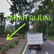 Tanah Luas 1300 Di Sibolangit Pinggir Jalan Medan Berastagi Dekat Ayam Penyet Cindelaras Sibolangit (21982959) di Kota Medan