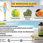 Obat Herbal Pelangsing Tubuh Yang Ampuh (21998715) di Kota Tangerang