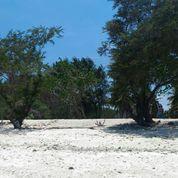Tanah Tepi Pantai Sunset Point Gili Trawangan Lombok (22089315) di Kota Mataram