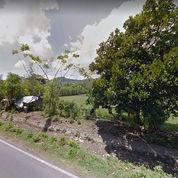 Tanah Setrategis JL. RAYA LEMBAR MATARAM (22089687) di Kota Mataram