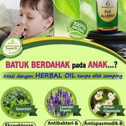 Obat Batuk Herbal Anak, Obat Batuk Berdahak Anak (22092439) di Kota Tangerang