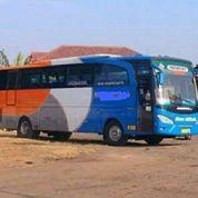 Hino R260 Tahun 2013 Karoseri Adiputro Seat 2-3