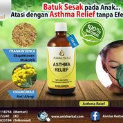 Obat Asma Anak Alami, Obat Herbal Asma Anak (22118823) di Kota Tangerang