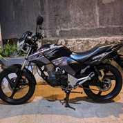 Honda Tiger Revo Tahun 2013 Terawat