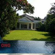 Rumah Mewah Tanah Luas Lokasi Premium Harga Paling Murah Di Duren Tiga Mampang Jakarta Selatan