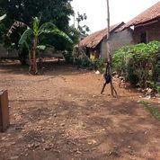 Tanah Harga Miring 1000% Murah Hanya Di Purwakarta (22179043) di Kab. Purwakarta