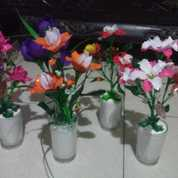 Bunga Mani Mani (22194479) di Kota Palembang