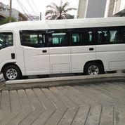 Isuzu Elf NLR Giga Microbus Long 20 Kursi Tahun 2019 ( Unit Baru ) (22208535) di Kota Jakarta Pusat